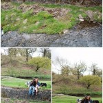 Pre_Wedding_Couple_Shoot_Leicester_Bradgate_Park_Dogs