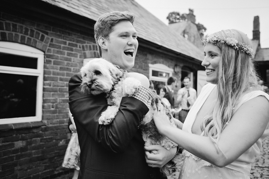 Dogs at weddings image